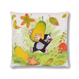 Pillow 30x30 Pear