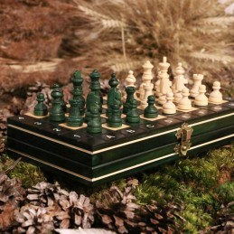 Chess, magnetic, green