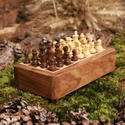 Chess, magnetic, traveller
