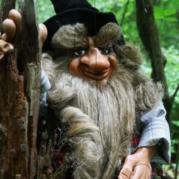 Forest Leprechaun