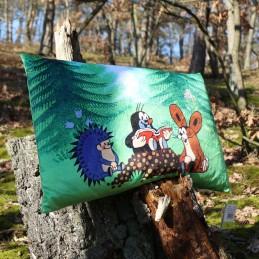 Pillow 45x30 Storyteller